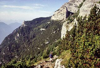 Un tratto in costa sul sent. alp. attr. Bortolo De Lorenzo