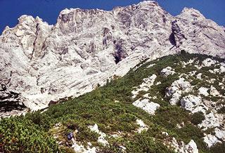 la parete meridionale dell'Antelao che sovrasta la Busa de la Ciaudiéra