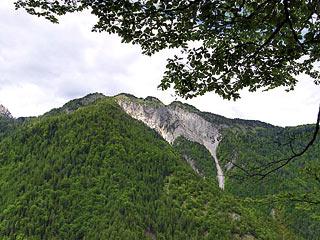 I colli di Mizói, che sovrastano il paese di Lozzo di Cadore, dal sent. segn 266