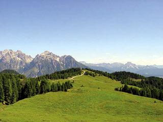pascolo di Pian dei Buoi; sullo sfondo, da sin. a d., le Dolomiti di Auronzo e le Creste di Confne