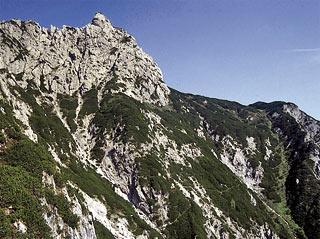 Tra i mughi sul sent. segn. 334, in vista della lontana Forc. Valgrande e del M. Brentóni