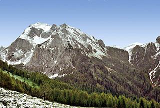Sui versanti meridionali del Col Ròsol, in vista del M. Tiàrfn
