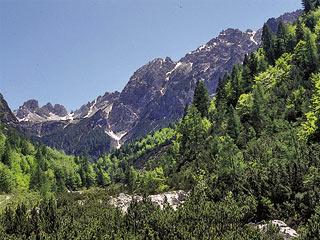 la  Val d'Anféla sovrastata dalle Pale de l'Ai